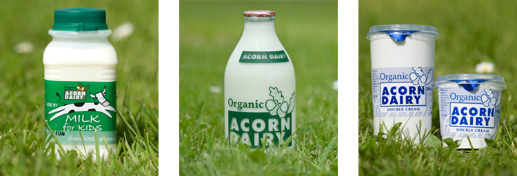 Acorn-Dairy-products