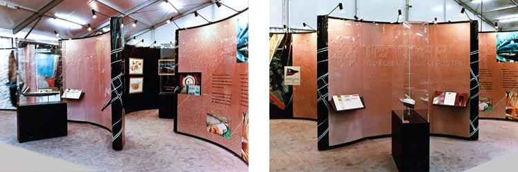 Tencara-Americas Cup Exhibitions-2